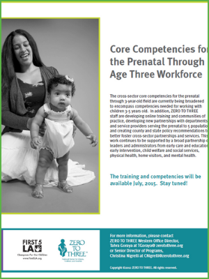 Core Competencies for the Prenatal Through Age Three Workforce