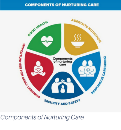 Components of nurturing care